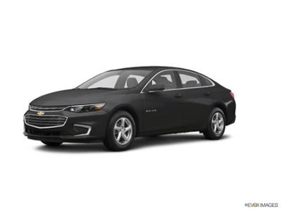 2017 Chevrolet Malibu at Phil Long Dealerships