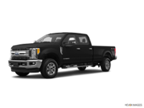 2017 Super Duty F-250 SRW Platinum