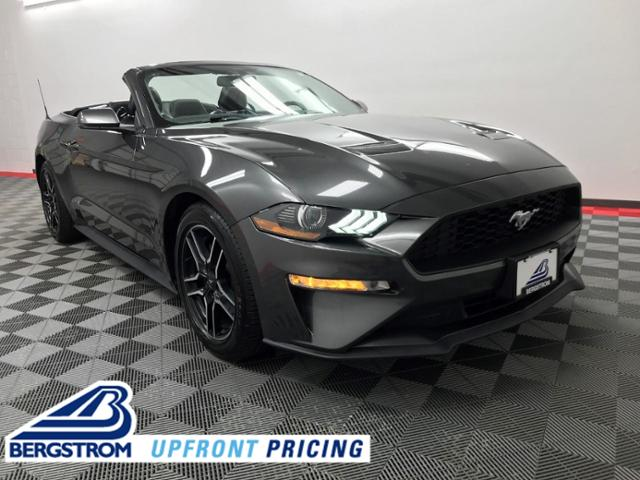 2019 Ford Mustang Vehicle Photo in Appleton, WI 54913