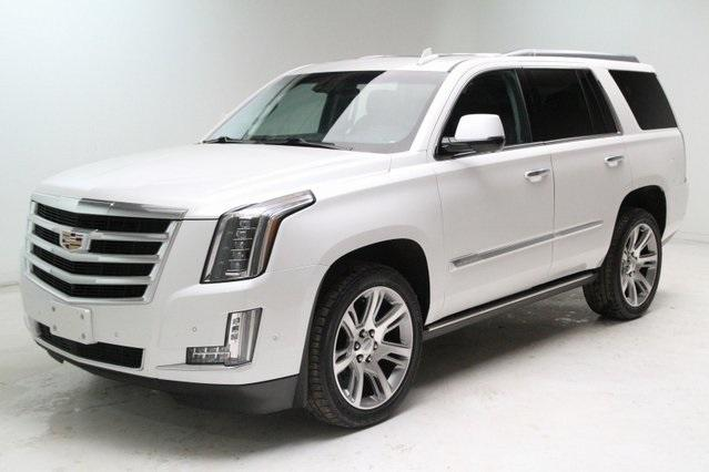 2019 Cadillac Escalade Vehicle Photo in Medina, OH 44256