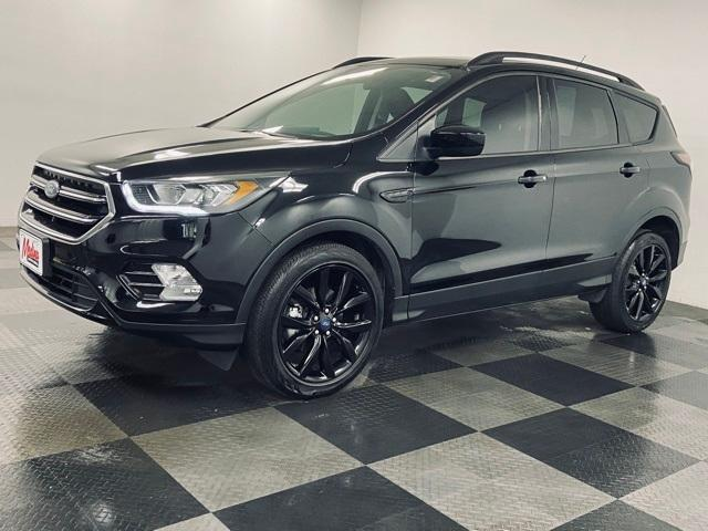 2018 Ford Escape Vehicle Photo in Medina, OH 44256