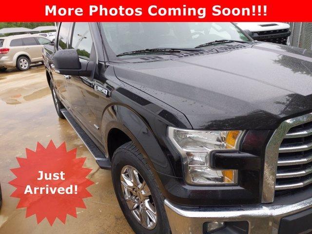 2015 Ford F-150 Vehicle Photo in SELMA, TX 78154-1460