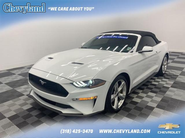 2019 Ford Mustang Vehicle Photo in Shreveport, LA 71105