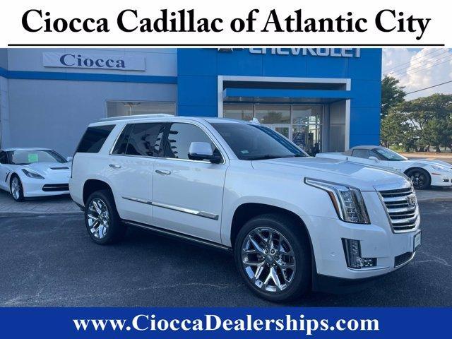 2017 Cadillac Escalade Vehicle Photo in Atlantic City, NJ 08401