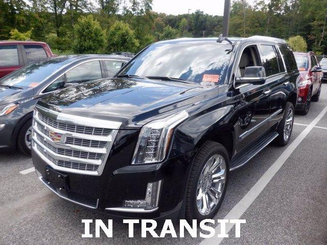 2020 Cadillac Escalade Vehicle Photo in ALLIANCE, OH 44601-4622