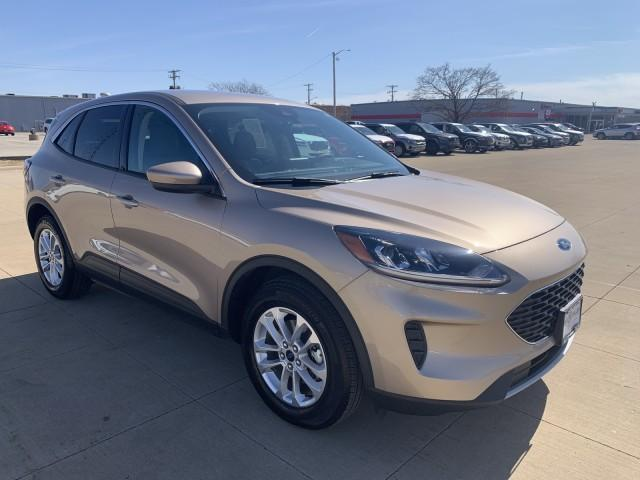 2020 Ford Escape Vehicle Photo in Peoria, IL 61615