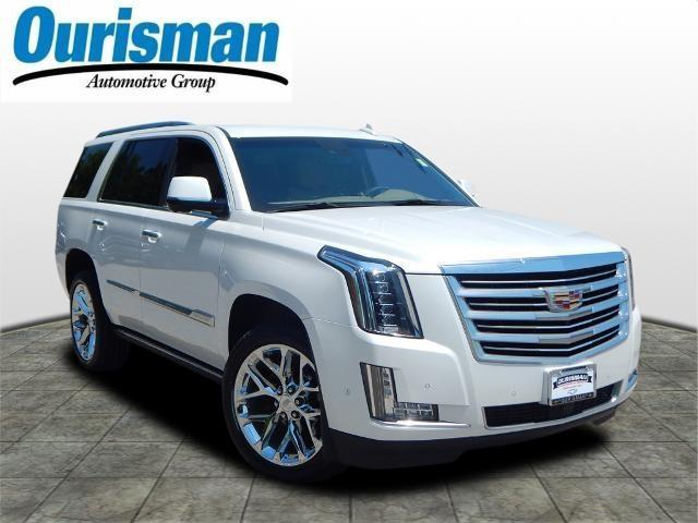 2019 Cadillac Escalade Vehicle Photo in Bowie, MD 20716