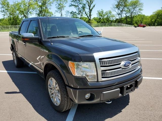 2012 Ford F-150 Vehicle Photo in Columbia, TN 38401