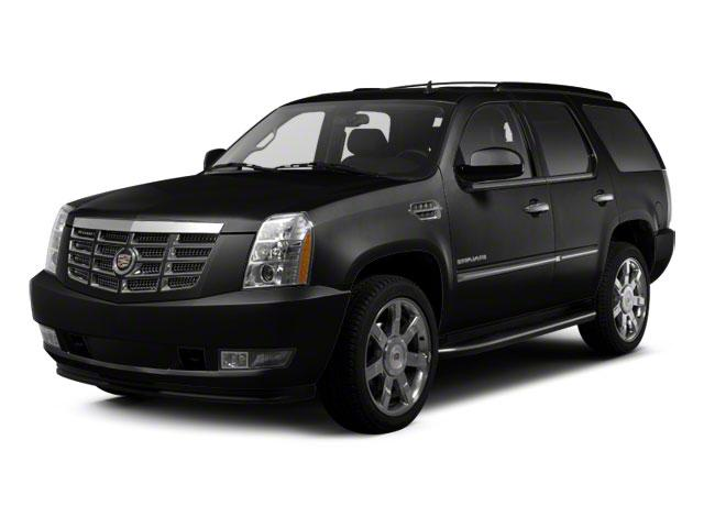 2010 Cadillac Escalade Vehicle Photo in Emporia, VA 23847