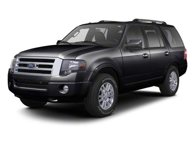 2010 Ford Expedition Vehicle Photo in Norwich, NY 13815