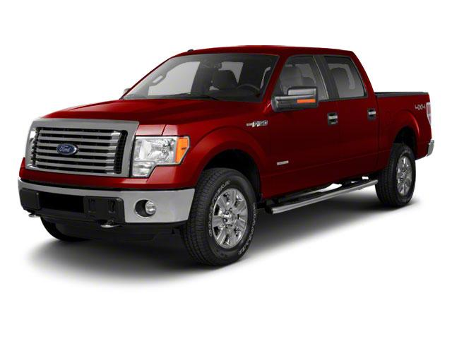2010 Ford F-150 Vehicle Photo in Nederland, TX 77627