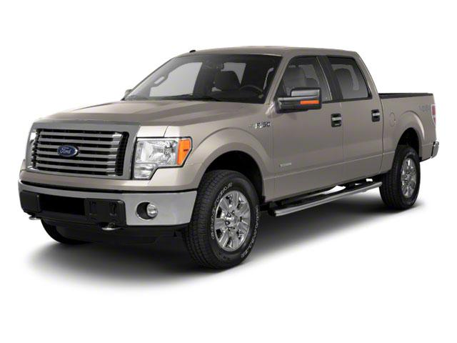 2010 Ford F-150 Vehicle Photo in Beaufort, SC 29906