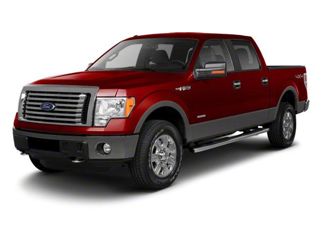 2011 Ford F-150 Vehicle Photo in Medina, OH 44256