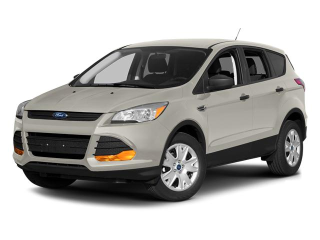 2013 Ford Escape Vehicle Photo in Mukwonago, WI 53149