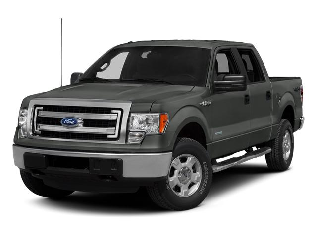 2013 Ford F-150 Vehicle Photo in Elyria, OH 44035