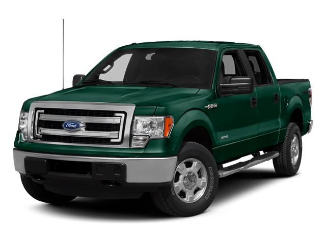 2013 Ford F-150 Vehicle Photo in Hudsonville, MI 49426