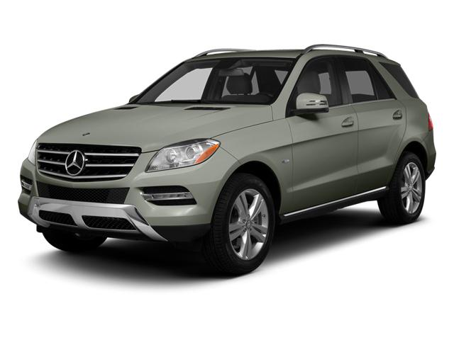 2013 Mercedes-Benz M-Class Vehicle Photo in TALLAHASSEE, FL 32308