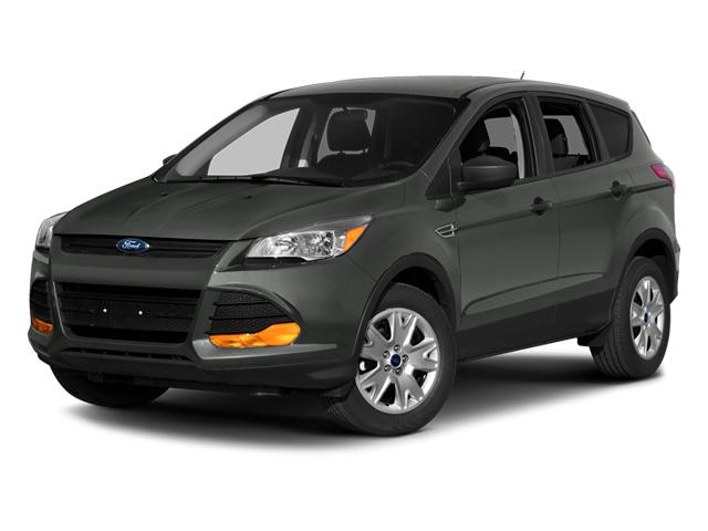 2014 Ford Escape Vehicle Photo in Kingwood, TX 77339