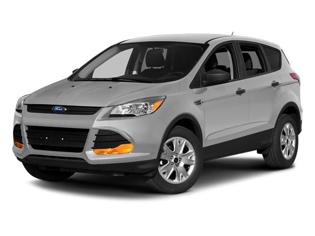 2014 Ford Escape Vehicle Photo in Joliet, IL 60586