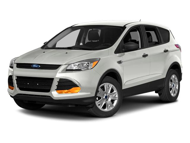 2014 Ford Escape Vehicle Photo in Beaufort, SC 29906
