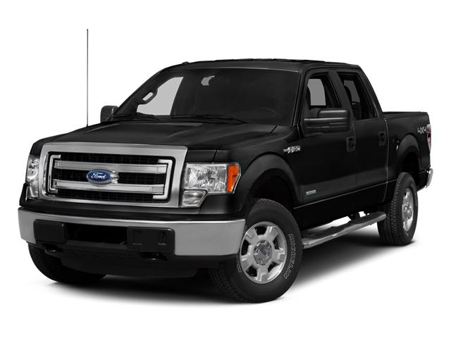 2014 Ford F-150 Vehicle Photo in Bradenton, FL 34207