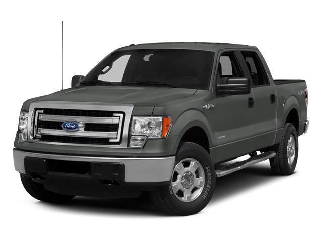 2014 Ford F-150 Vehicle Photo in Beaufort, SC 29906