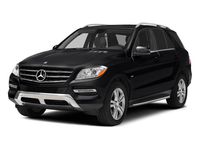 2014 Mercedes-Benz M-Class Vehicle Photo in Pocomoke City, MD 21851