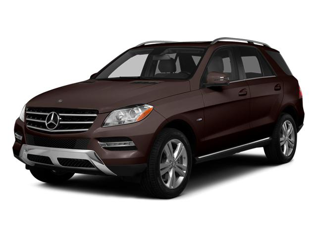 2014 Mercedes-Benz M-Class Vehicle Photo in Temple, TX 76502