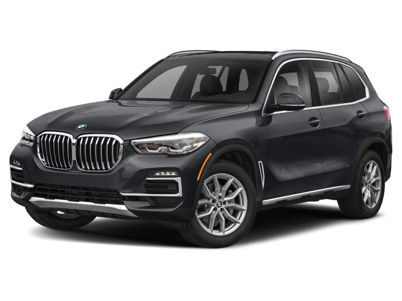 2019 BMW X5 xDrive40i Vehicle Photo in Temple, TX 76502