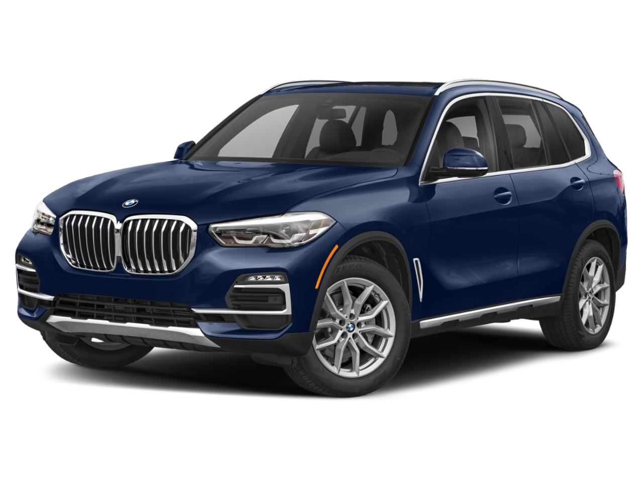 2019 BMW X5 xDrive50i Vehicle Photo in Charleston, SC 29407