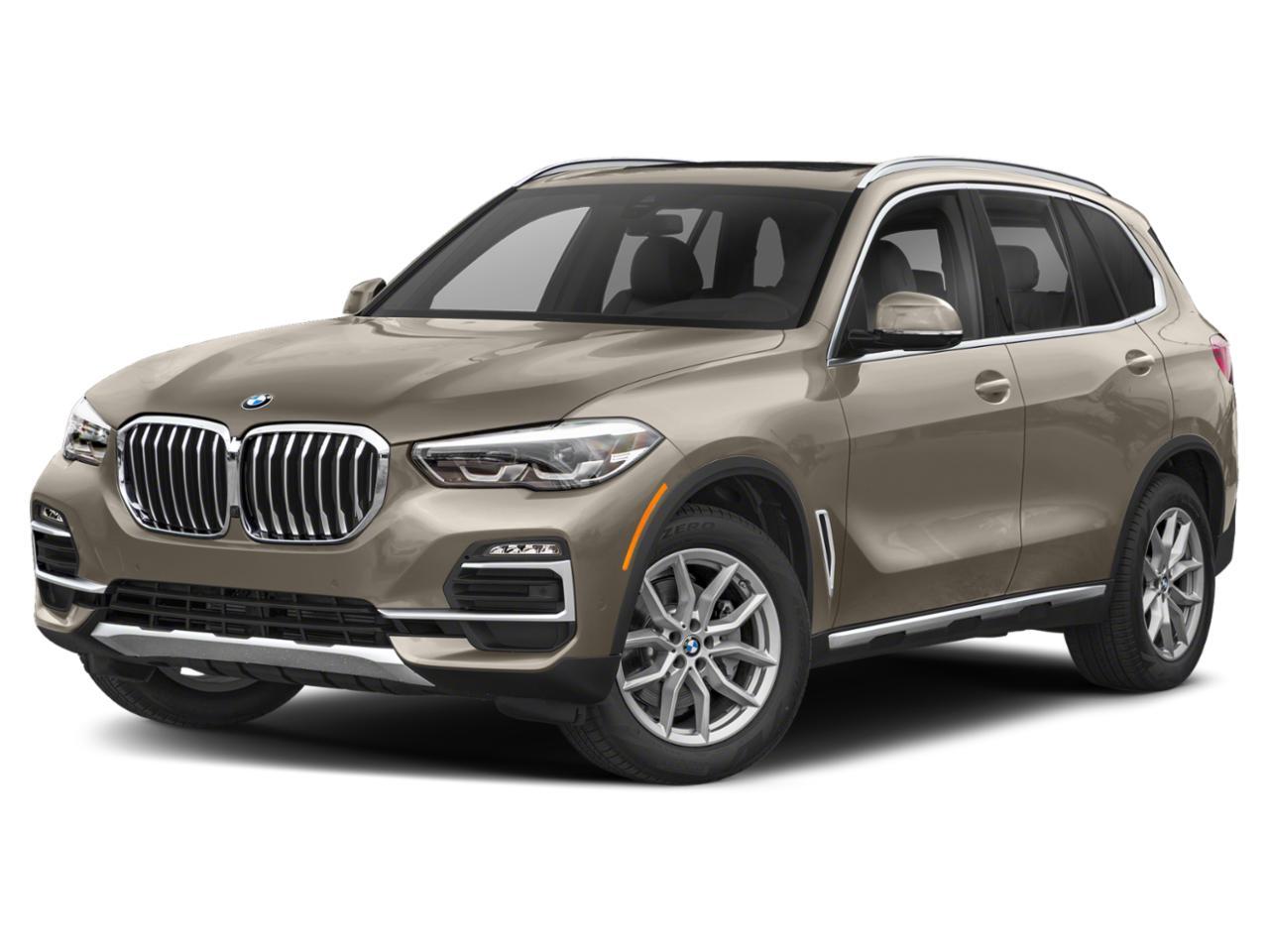 2019 BMW X5 xDrive40i Vehicle Photo in Temple, TX 76502