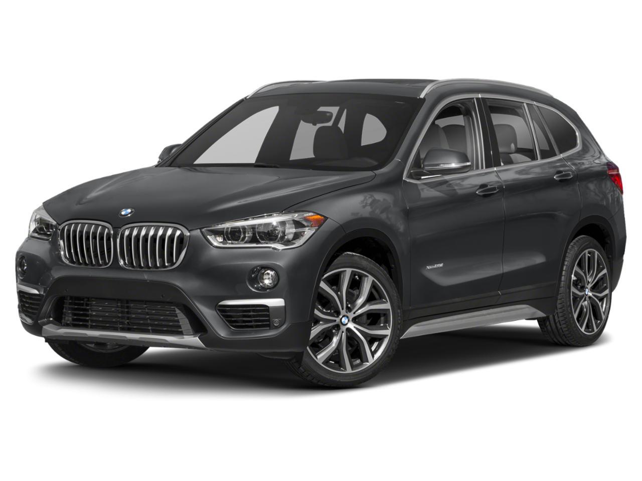 2019 BMW X1 sDrive28i Vehicle Photo in Charleston, SC 29407