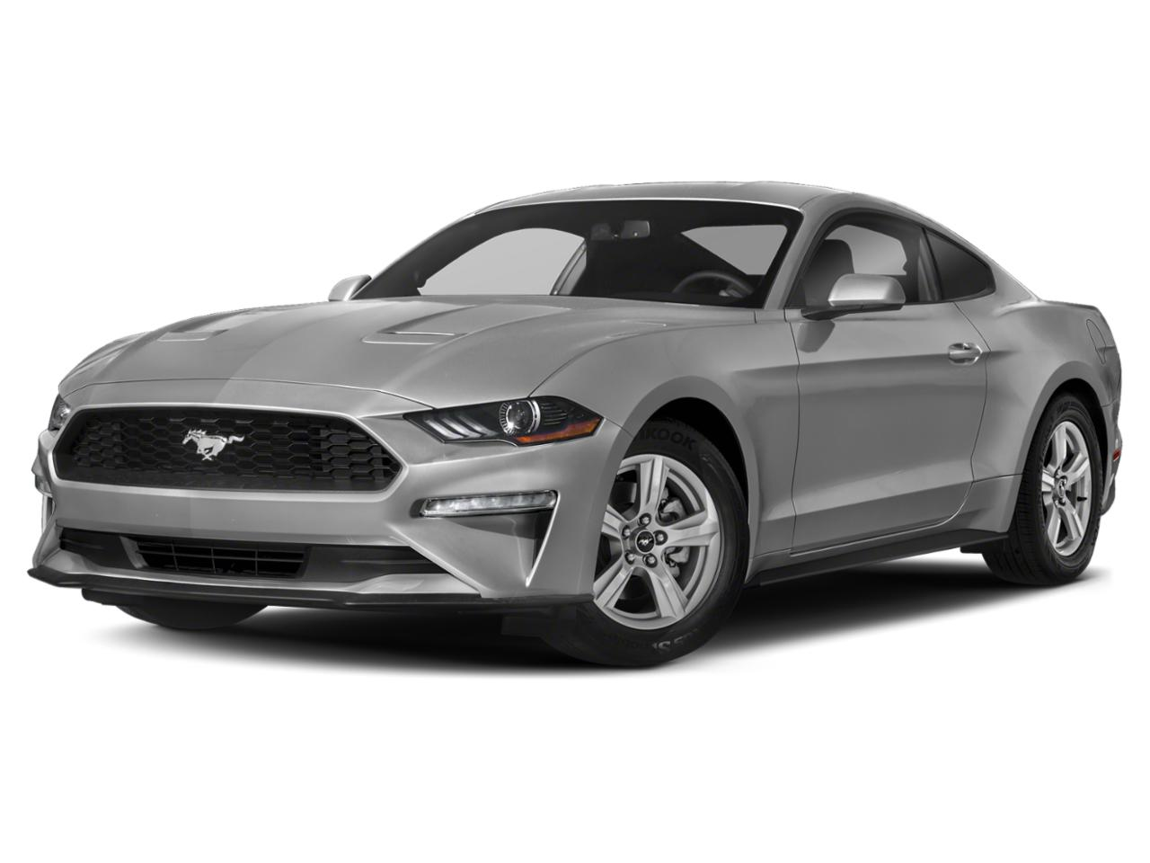 2019 Ford Mustang Vehicle Photo in Danbury, CT 06810