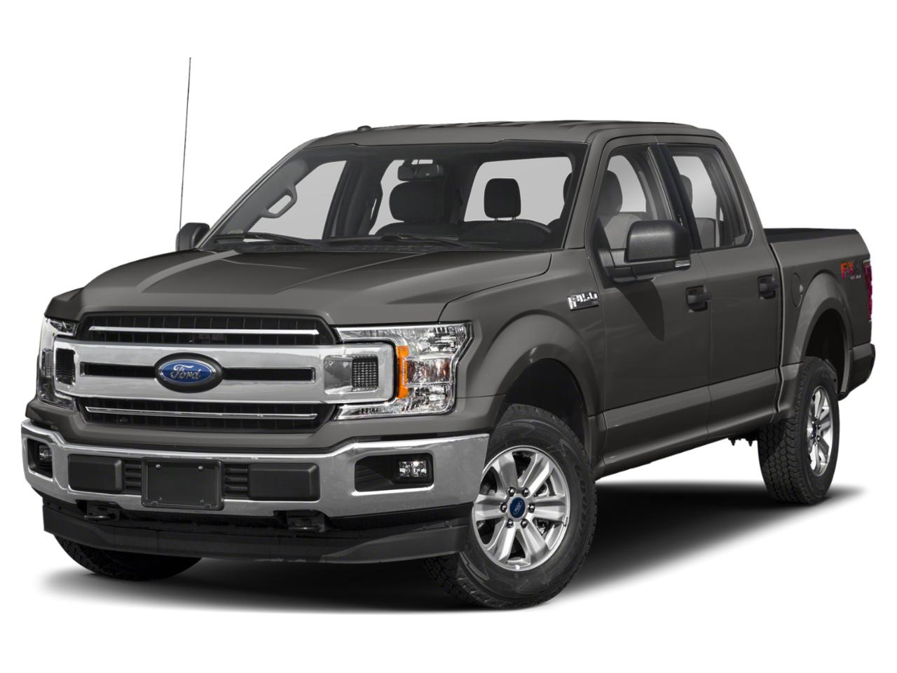 2019 Ford F-150 Vehicle Photo in Gainesville, FL 32609