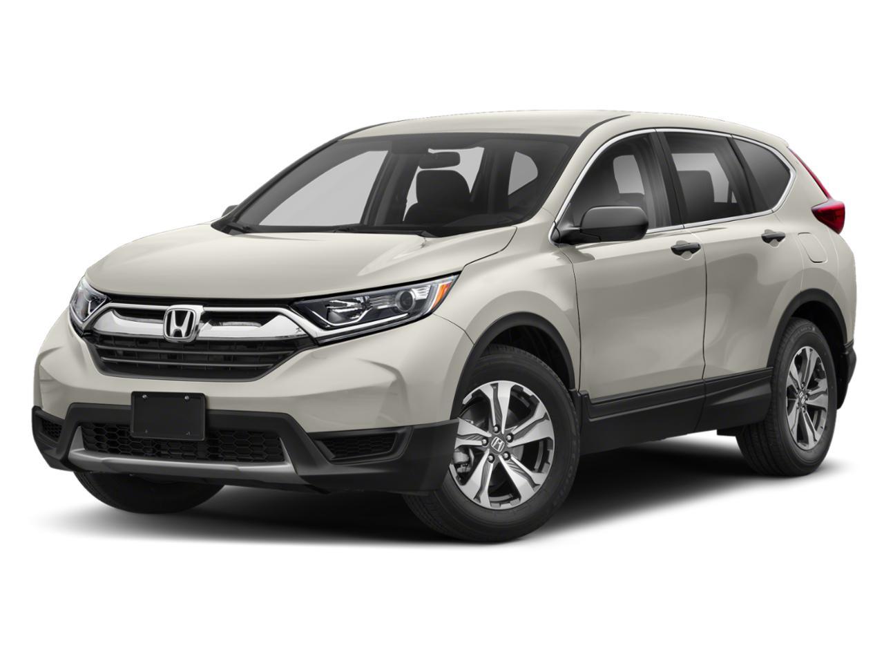 2019 Honda CR-V Vehicle Photo in Mission, TX 78572