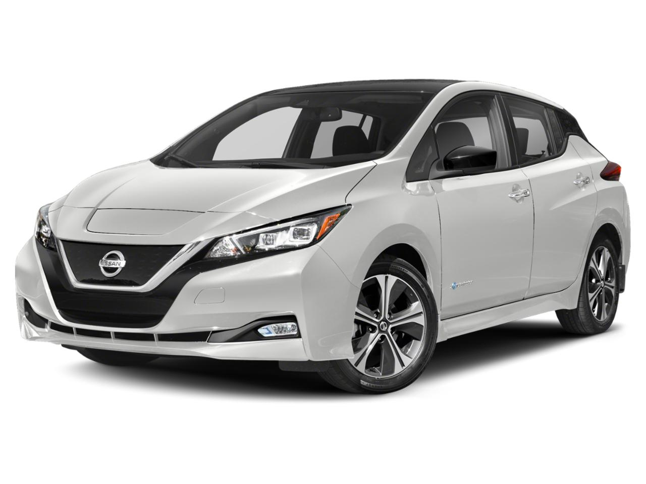 2019 Nissan LEAF Vehicle Photo in Chapel Hill, NC 27514