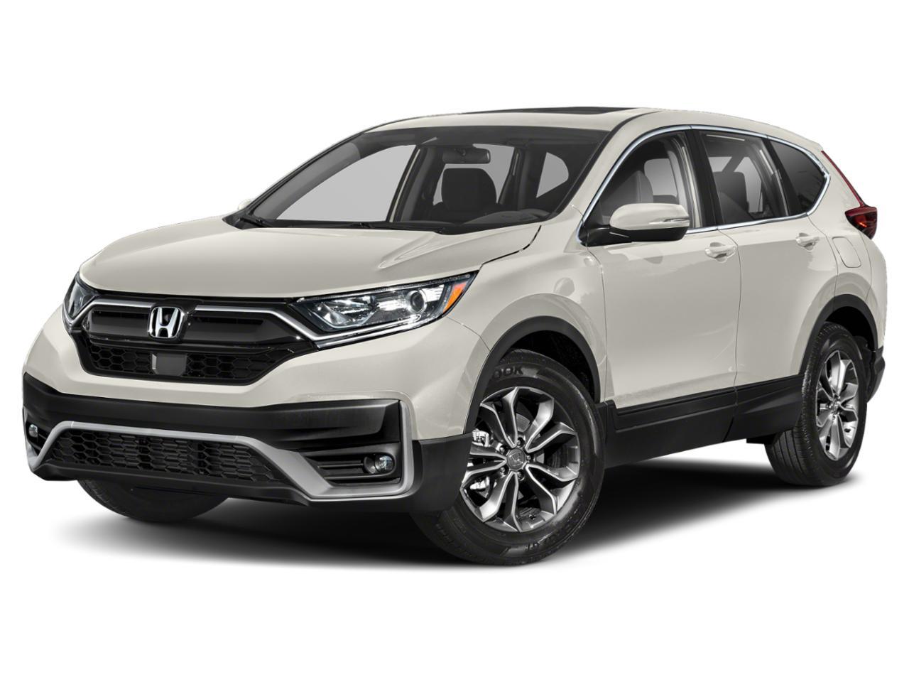 2020 Honda CR-V Vehicle Photo in San Antonio, TX 78238