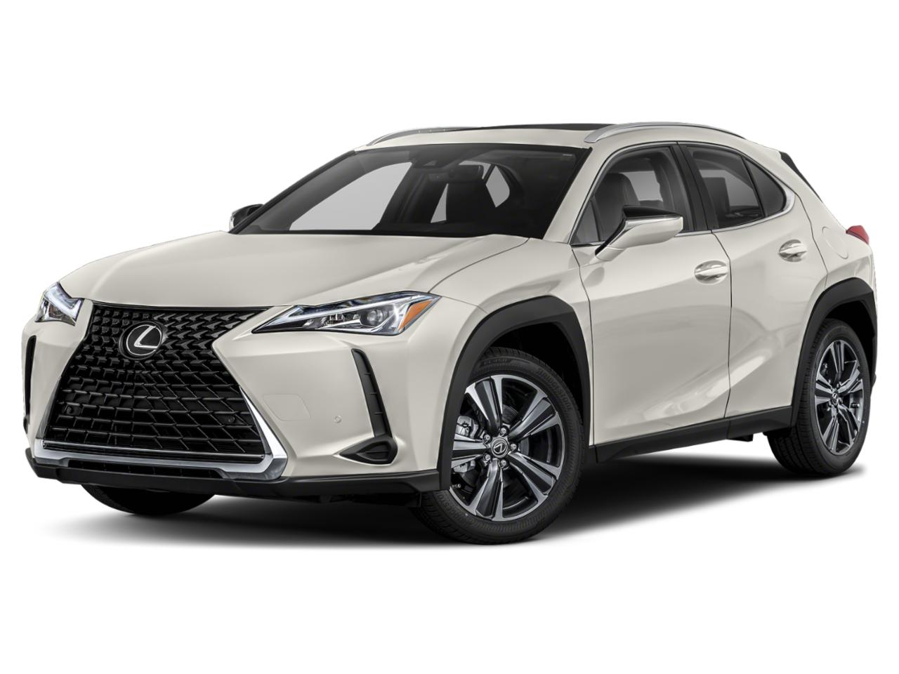 2020 Lexus UX 200 Vehicle Photo in Houston, TX 77074