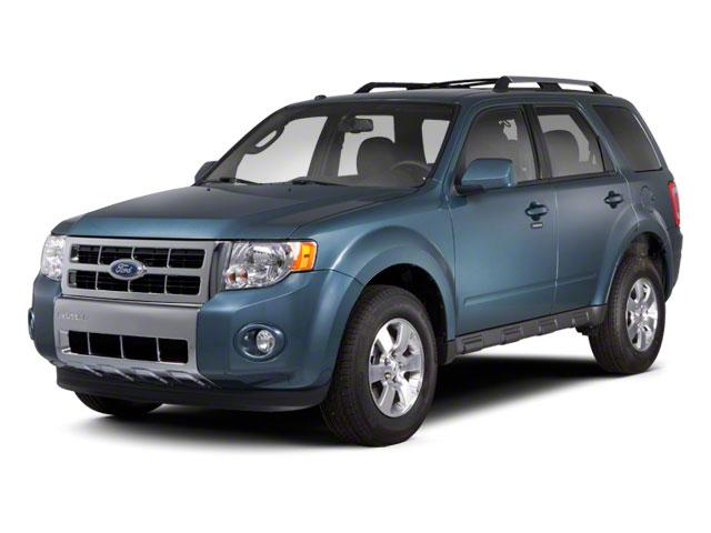 2010 Ford Escape Vehicle Photo in Freeland, MI 48623