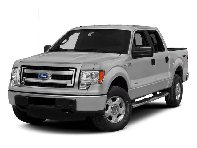 2013 Ford F-150 Vehicle Photo in Johnson City, TN 37601