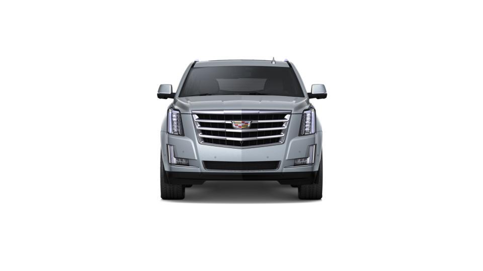 2018 Cadillac Escalade Vehicle Photo in Chicopee, MA 01020