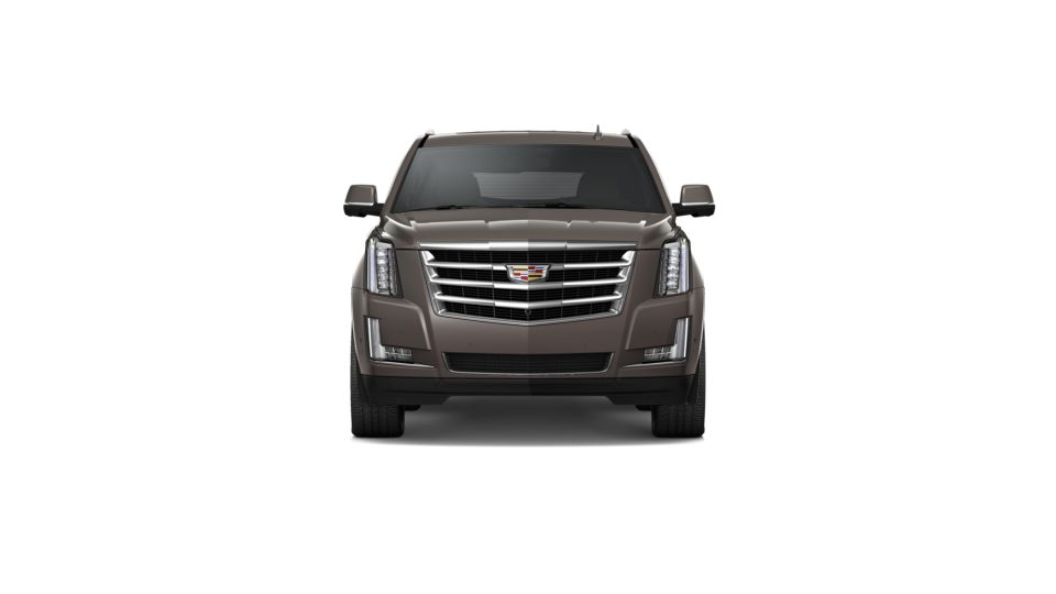 2020 Cadillac Escalade Vehicle Photo in Madison, WI 53713