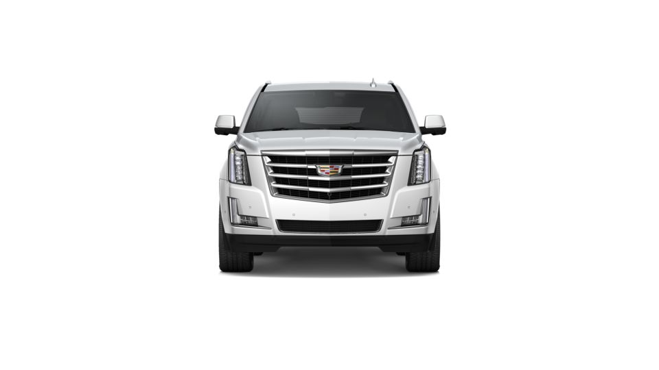 2020 Cadillac Escalade Vehicle Photo in Lansing, MI 48911