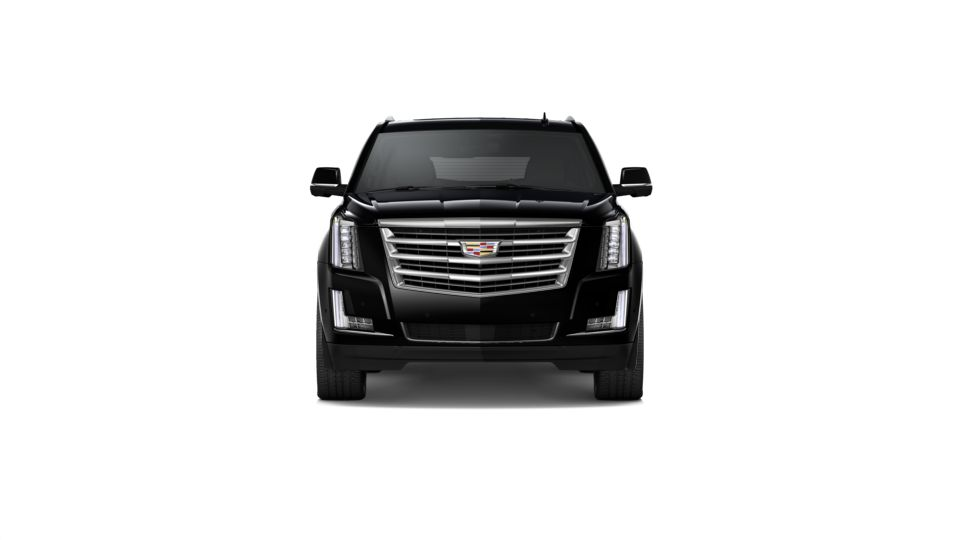 2020 Cadillac Escalade ESV Vehicle Photo in Madison, WI 53713
