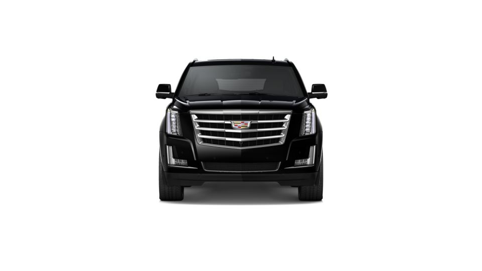 2020 Cadillac Escalade ESV Vehicle Photo in Rome, GA 30161