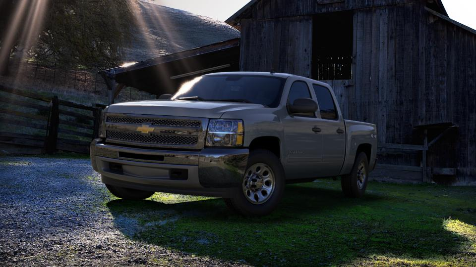 2013 Chevrolet Silverado 1500 Vehicle Photo in Wendell, NC 27591