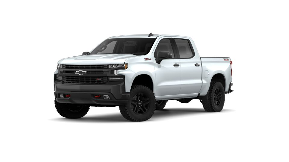 2019 Chevrolet Silverado 1500 Vehicle Photo in Mukwonago, WI 53149
