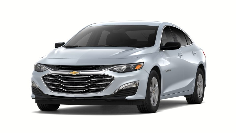 2019 Chevrolet Malibu Vehicle Photo in Clinton, MI 49236