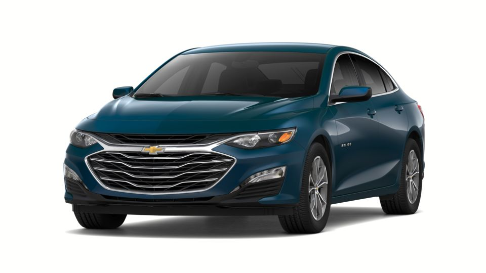 2019 Chevrolet Malibu Vehicle Photo in Norwich, NY 13815