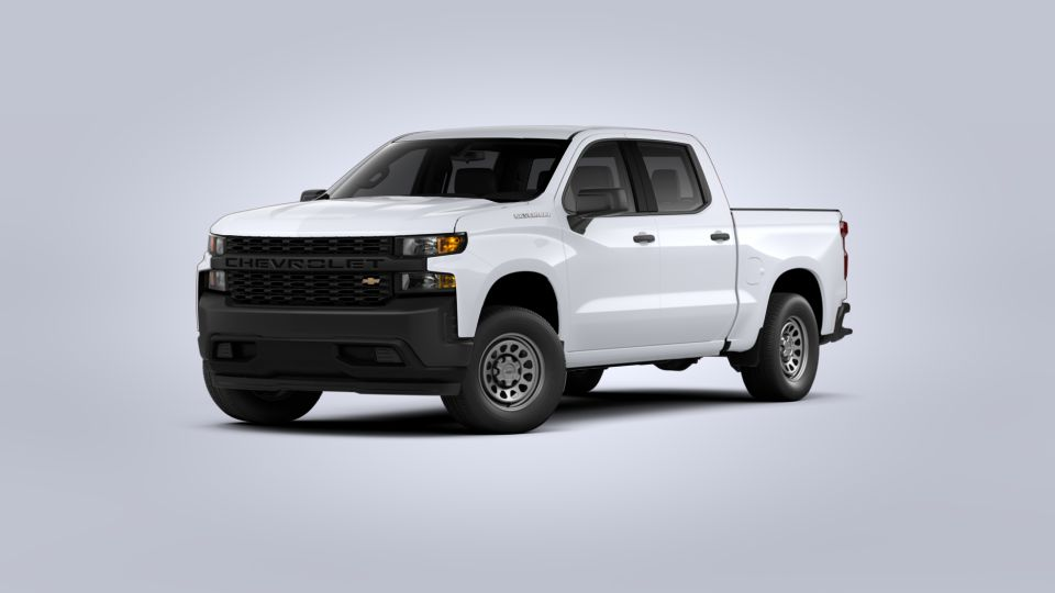 2020 Chevrolet Silverado 1500 Vehicle Photo in Wendell, NC 27591